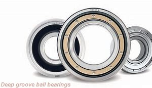 3,175 mm x 6,35 mm x 7,518 mm  SKF D/W R144J R deep groove ball bearings