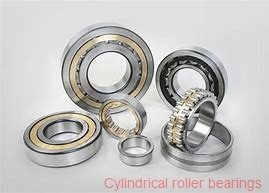 100,000 mm x 250,000 mm x 58,000 mm  NTN NJ420 cylindrical roller bearings