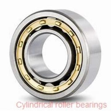 160 mm x 290 mm x 48 mm  NACHI NUP 232 cylindrical roller bearings