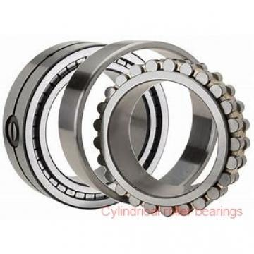220 mm x 400 mm x 65 mm  NACHI NJ 244 cylindrical roller bearings